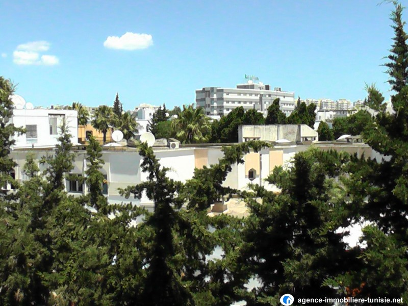 images_immo/tunis_immobilier140720manar10.JPG