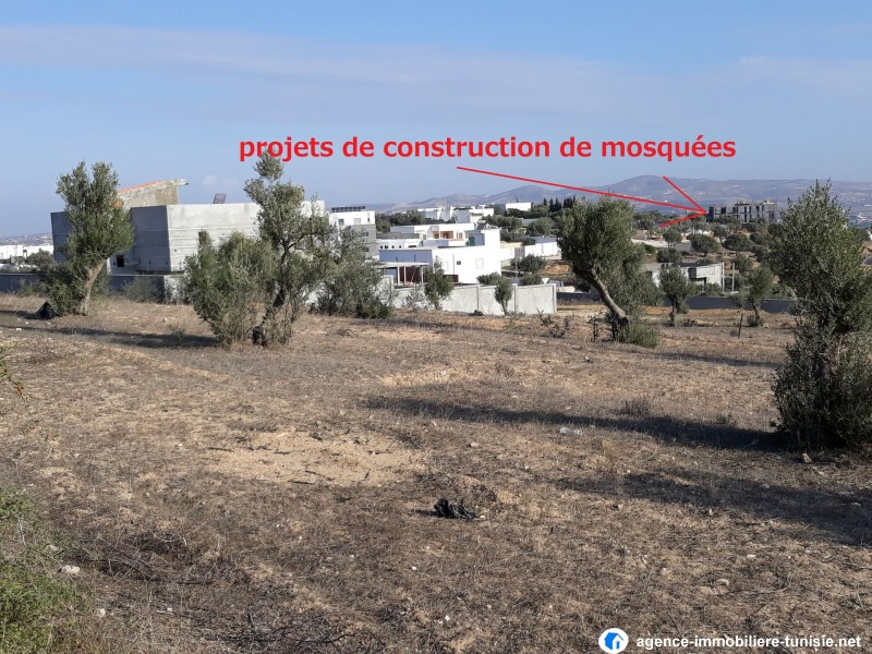 images_immo/tunis_immobilier2012111 (6).jpg